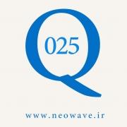 پرسش و پاسخ با گلن نیلی-25