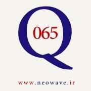 پرسش و پاسخ با گلن نیلی-65