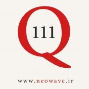 پرسش و پاسخ با گلن نیلی-111