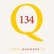 پرسش و پاسخ با گلن نیلی-134